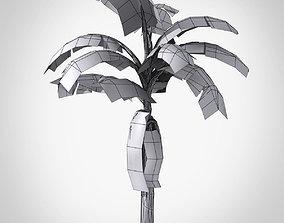 game-ready Banana Tree 3D Model