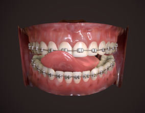3D asset Great Teeth Collection - Mouth for character