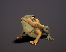 brown frog 3D model