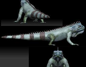 Iguana Lizard 3D model rigged