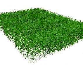 Grass architectural 3D model