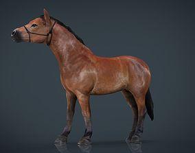 Horse 2 3D asset
