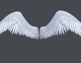 Lowpoly angel wings 3D asset