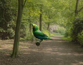 bird flying 3D asset