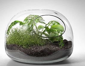 Dome Terrarium with Plant decorative 3D model