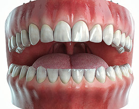 3D Realistic Human Mouth model