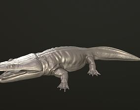 Metoposaurus 3D print model