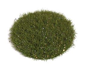 3D Grass landscape