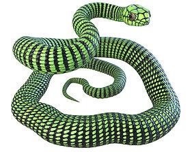 Animated Boomslang Snake 3D model