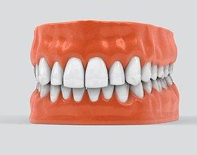 Human Teeth 3D