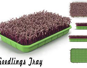 Seedlings Tray 3D model