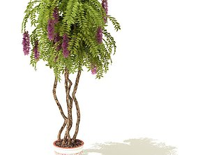 Potted Tree With Purple Blossoms 3D