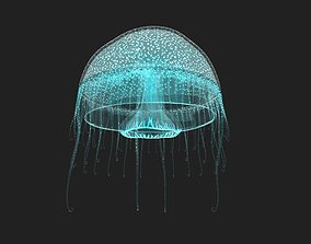 3D model low-poly Jelly Fish