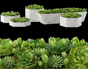 Rh Marble trough model