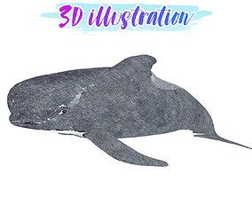 3D model Long Finned Pilot Whale Illustration Animated - 1