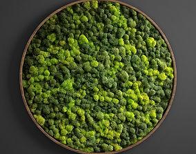 3D panel moss circle fytowall