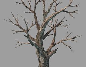 3D model tree Plants - Deciduous 68