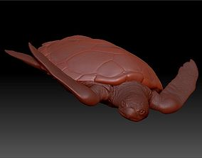 3D model Zbrush HiPoly Turtle HD