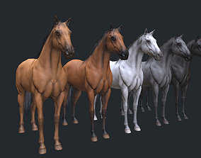 game 3D asset realtime Horse