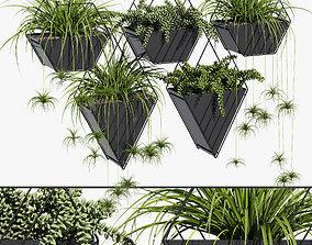Tulane hanging planter 3D model