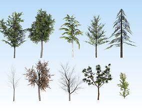 Tree 3D Models | CGTrader