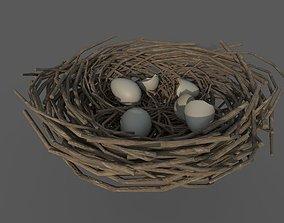 Bird Nest 3D asset