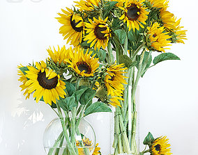 Sunflowers leaves 3D