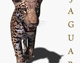 zoo Realistic Jaguar - no fur 3d model animated