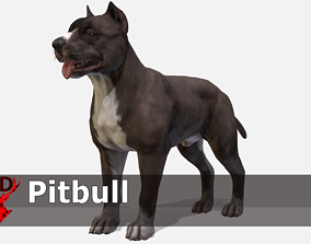 Dog - Pibull 3D asset