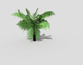 3D asset low-poly grass Plant