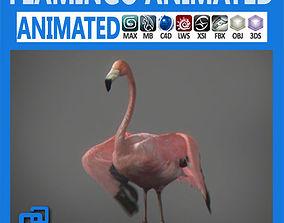 Animated Flamingo exotic 3D