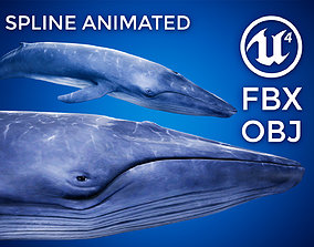 Blue Whale - UE4 3D model animated