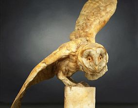 3D asset Owl Photorealistic Posed