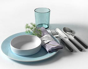 3D model Asparagus Densiflorus Napkin and Kitchen