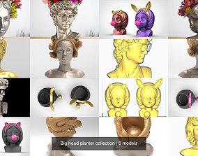 Big head planter collection 3D
