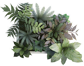 Vertical Plant Frame 55 X 40 Cms design 3D model