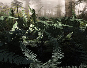 Set plants of north forest 10 types 3D asset