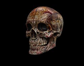 3D model Human Skull Gore - 5 Materials