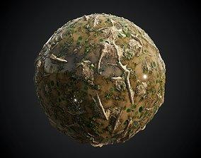 3D Forest Swamp Mud Soil Seamless PBR Texture