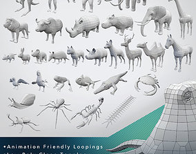 3D asset 32 Animals Base Meshes