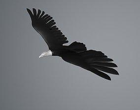 3D model White Eagle flying