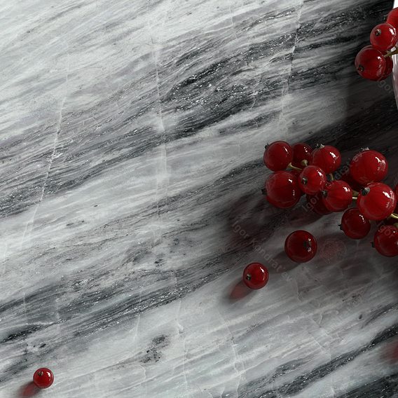 Red Currant on the stone