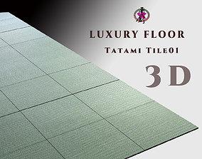 Luxury Floor - Tatami Tiles 3D model