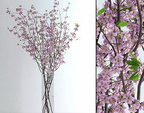 Cherry Blossom 3D model branch