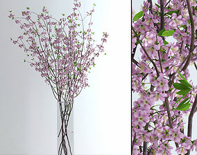 Cherry Blossom 3D model branch