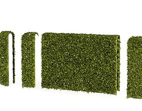 3D model Hedge Puzzle