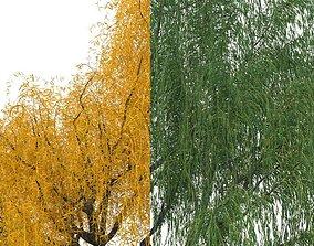 3D model willow trees