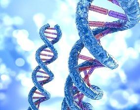 3D DNA strand molecule concept human anatomy