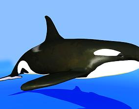 killer whale 3D model animated