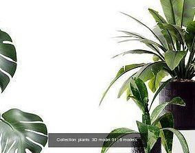 Collection plants 3D model 01
